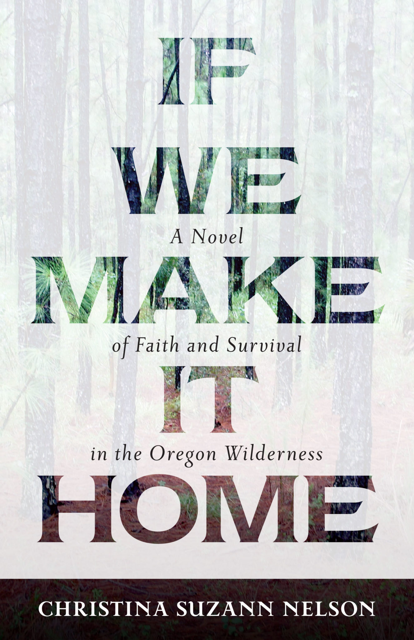 Book Review: If We Make It Home by Christina Suzann Nelson